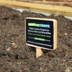 close up of vegetable sign in soil
